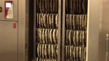 Fisk bearbetningsanläggningen — Stockvideo