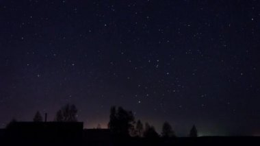 Stars Turn Through Trees — Stock Video