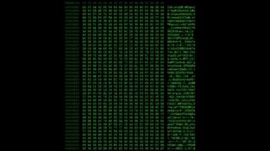 Green Hexadecimal code — Stock Video