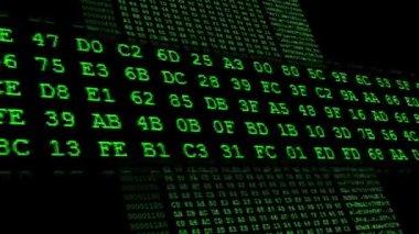 Green Hexadecimal code running up — Stock Video