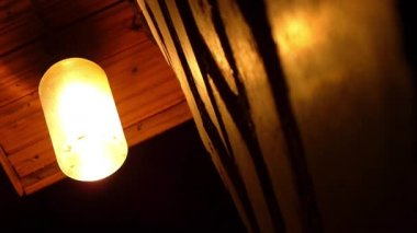 Moths flying around a light bulb — Wideo stockowe