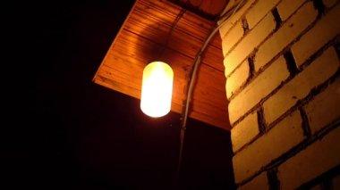Moths flying around a light bulb — Stock Video