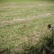 Stock Photo: Areenclosed by barbed wire