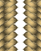 Abstract pattern golden edge. Design template — Stock Photo