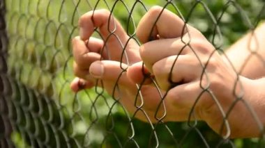 Hands compressed metal fence. Help the person. Break loose — Stock Video