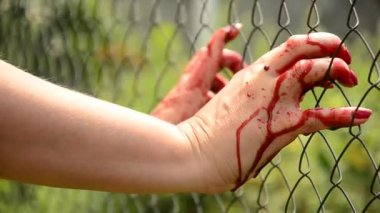 Woman  in the blood. Breaks loose. Violence against the person. Bloodied woman clings to a fence — Stock Video