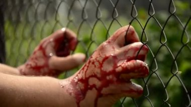 Man in the blood. Breaks loose. Violence against the person. Bloodied man clings to a fence — Stock Video