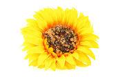 Artificial Sunflower — Stock Photo