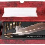 Feather Pen — Stock Photo