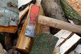 Faire du bois de chauffage — Photo