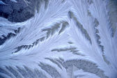Frost pattern on window glass — Stock Photo