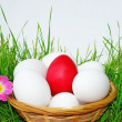Stock Photo: Basket with Easter eggs in the grass
