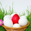 Basket with Easter eggs in the grass — Stock Photo
