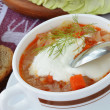 Cabbage soup with sour cream. — Stockfoto