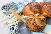 Kaiser roll and poppy seed braid — Stock Photo