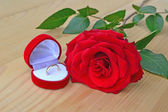Red rose with wedding ring — Stock Photo