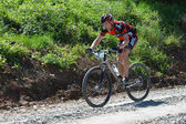 Cyclist on a mountain bike — Fotografia Stock