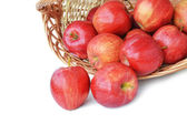Red apples on white — Stock Photo