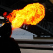 Fire under bridge — Stock Photo #19159827