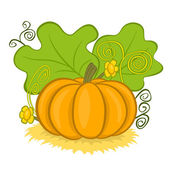 Big pumpkins on hay — Stock Vector