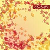 Autumn leaves vector — Stock Vector