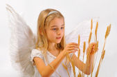 Angel with wheat classes — Stock Photo