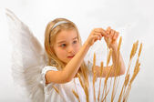 Angel of Fertility — Stock Photo