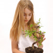 Girl enjoying the tree — Stock Photo