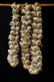 Braids of garlic, isolated on black — Stock Photo