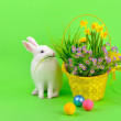 White bunny, colored eggs and flowers on green — Stock Photo