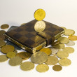 Gold coins and wallet with credit cards — Foto de Stock