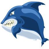 Shark angry — Stock Photo