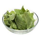 Fresh spinach in a bowl (Clipping path included) — Stock Photo