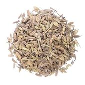 Dried fennel seeds — Stock Photo