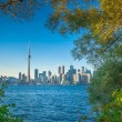Toronto in early autumn — Stock Photo
