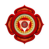 Base Chakra Mandala — Stock Photo