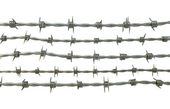 Barbed Wire — Stockfoto