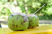 Fresh Coconut — Stock Photo
