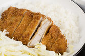 Tonkatsu - Japanese breaded deep fried pork cutlet served with shredded cabbage and steamed rice. — Stock Photo