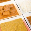 Thali — Stock Photo #19571825