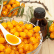 Sea buckthorn oil — Stock Photo