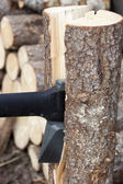 Axe  prick to the tree and splitting it into two parts.  — Stock Photo