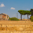 Old Farm House in Toscana Placed Next To Cypress — Stock Photo #15474847