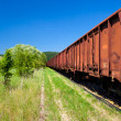 Old Rusty Cargo Train Deposit - Stock Photo