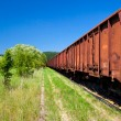 Стоковое фото: Old Rusty Cargo Train Deposit