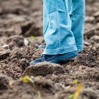 Walking through a Ploughed Soil Wearing Boots in the Autumn — Stock Photo