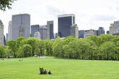 Central Park glade Midtown Mahnattan New York — Stockfoto