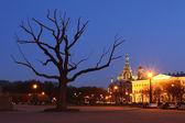 Saint-petersbugr kirche in der nacht — Stockfoto