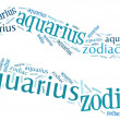 Stock Photo: Textcloud: silhouette of aquarius