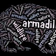 Armadillo wordcloud — Stock Photo